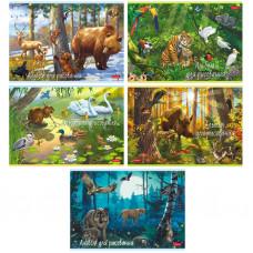 Альбом для рисования 20 лист А4 Hatber В сказочном лесу