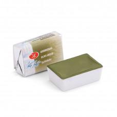 Краски акварель кювета 2,5мл (Белые ночи ) оливковая 1911727